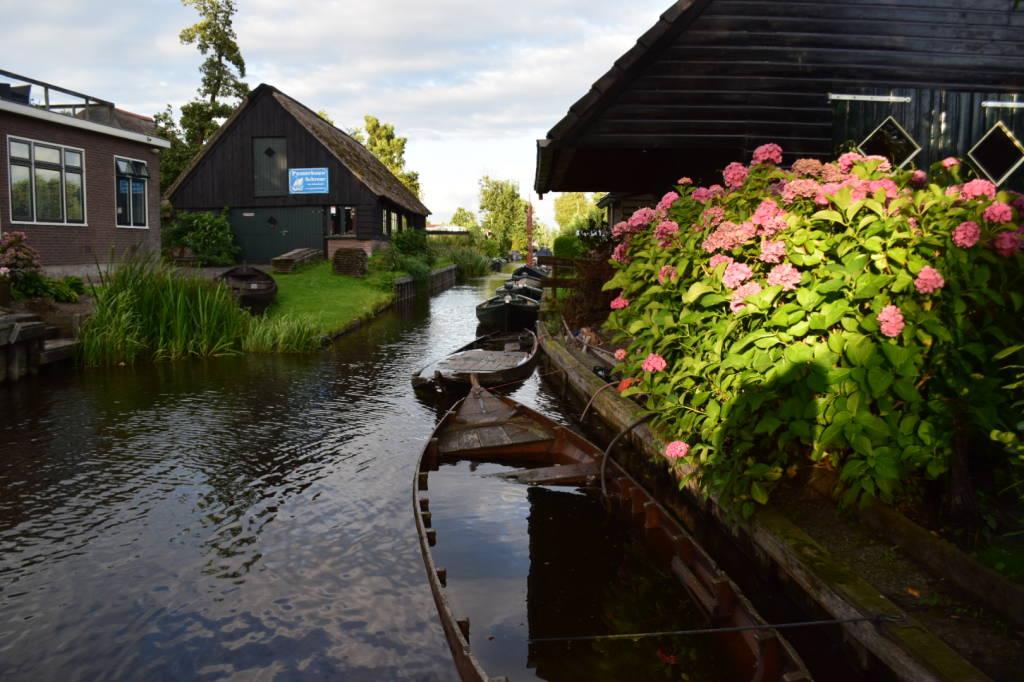 In bici alla scoperta dell\'Olanda