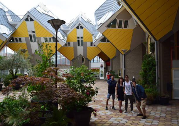 Rotterdam siti di incontri