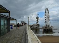 In bici in Olanda: L'Aia, Rotterdam, Delft