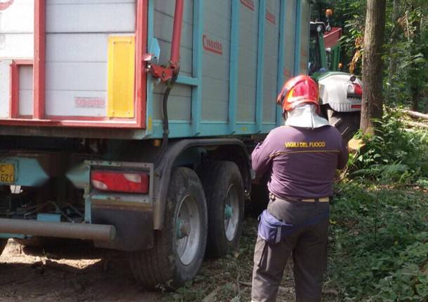 Un operaio muore mentre taglia gli alberi