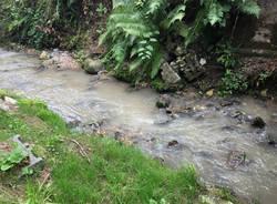 inquinamento fiume olona rasa