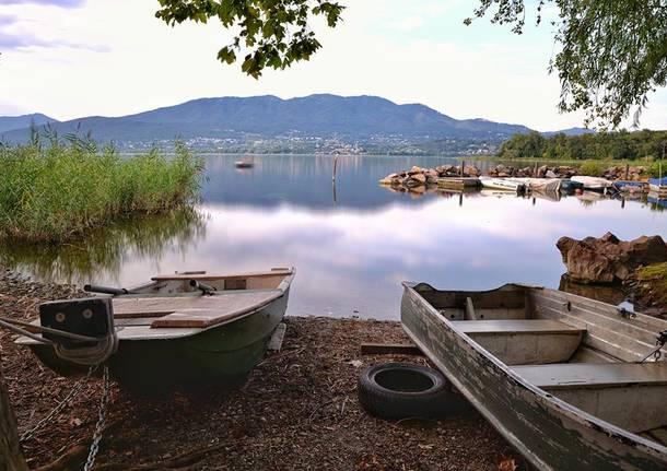 Lago basso a Cazzago Brabbia