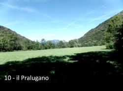 Tra i fiori e le piante del Pralugano e del parco di Villa Cagnola