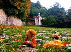 autunno lungo la via delle cappelle Giuseppe Marangon