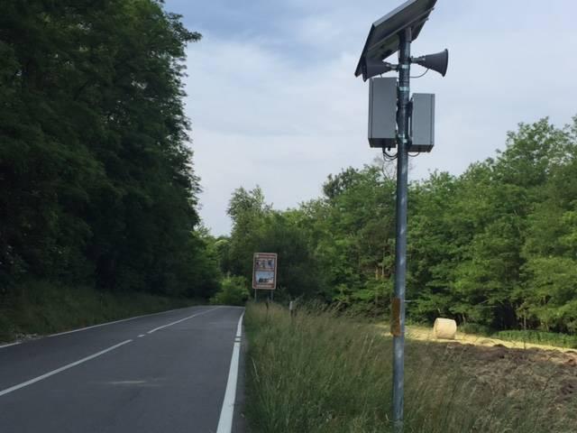 Road kill, il sistema per salvare animali e automobilisti