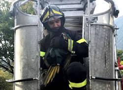 Gemonio - Pappagallo acchiappato dai Vigili del fuoco