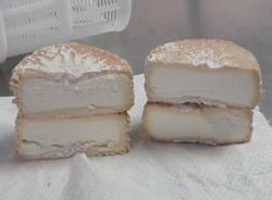 Il formaggio Capracanta
