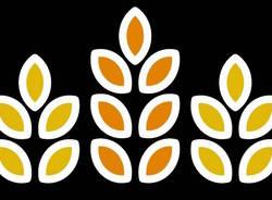 logo birrificio sociale di malnate birra