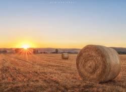 pianura agricoltura andrea plebani