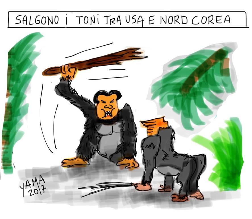 vignetta pierre ley