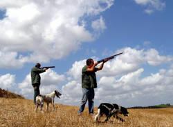 caccia generiche