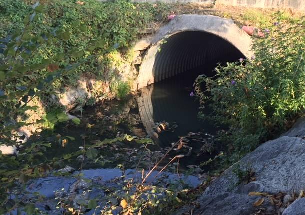 Arnetta, fiume delle puzze