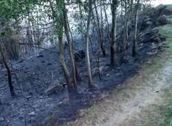 Incendio di Bassano ,al via la bonifica