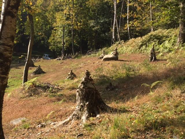 Il bosco degli ometti