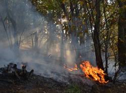 Sul fronte del fuoco
