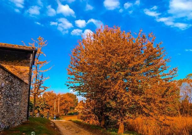 L'autunno nelle foto dei lettori
