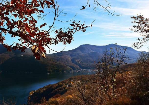 Cuasso al Monte - foto di Fabiana Selmin