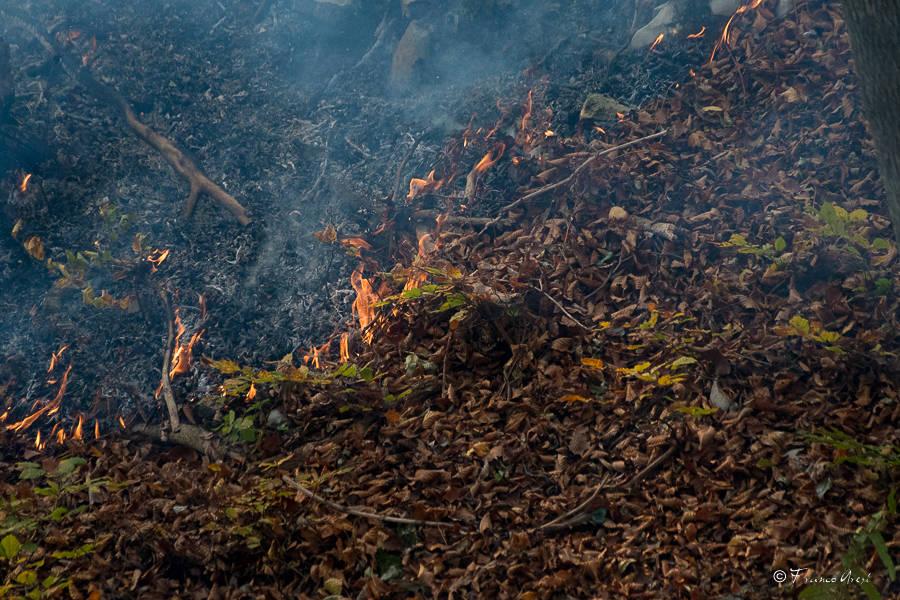 Incendio al Campo dei Fiori, soccorsi al lavoro -2