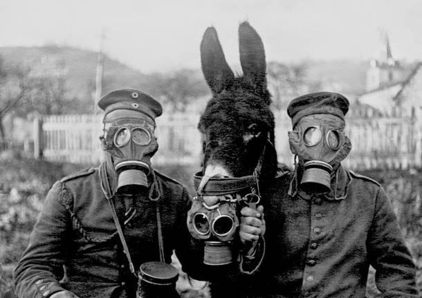 Prima Guerra Mondiale Prima Guerra Totale