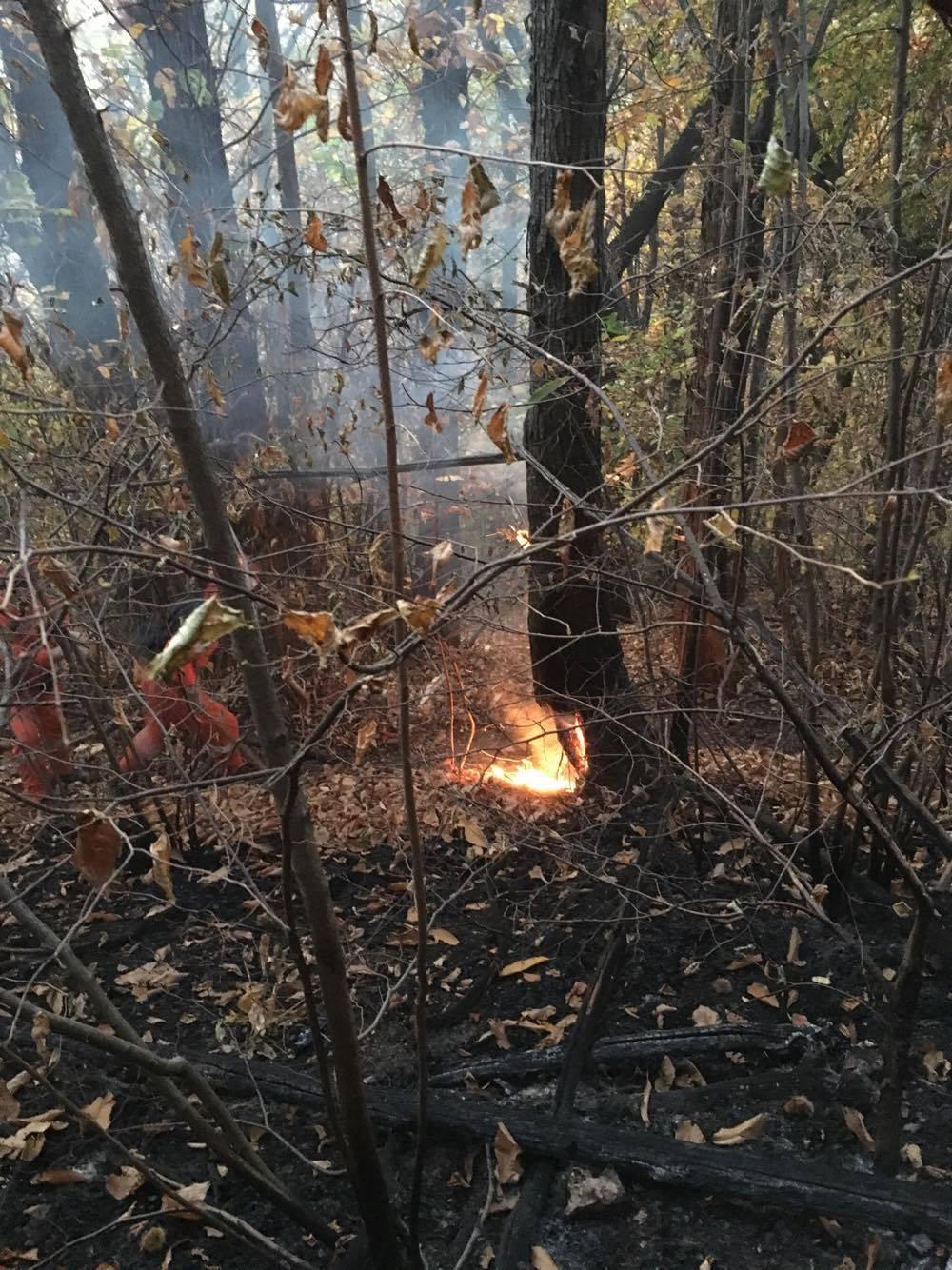 Squadra Antincendio Gemonio