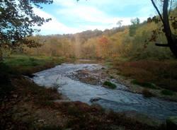 valle olona fiume lonate ceppino