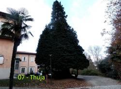 Alla scoperta dei giardini di Villa Mirabello