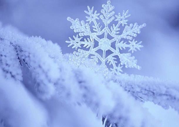Foto Di Natale Neve Inverno 94.L Inverno E Arrivato Freddo E Neve In Agguato
