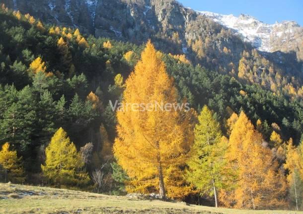 Un angolo della Val Divedro...