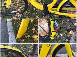 Bicicletta Ofo danneggiata e abbandonata