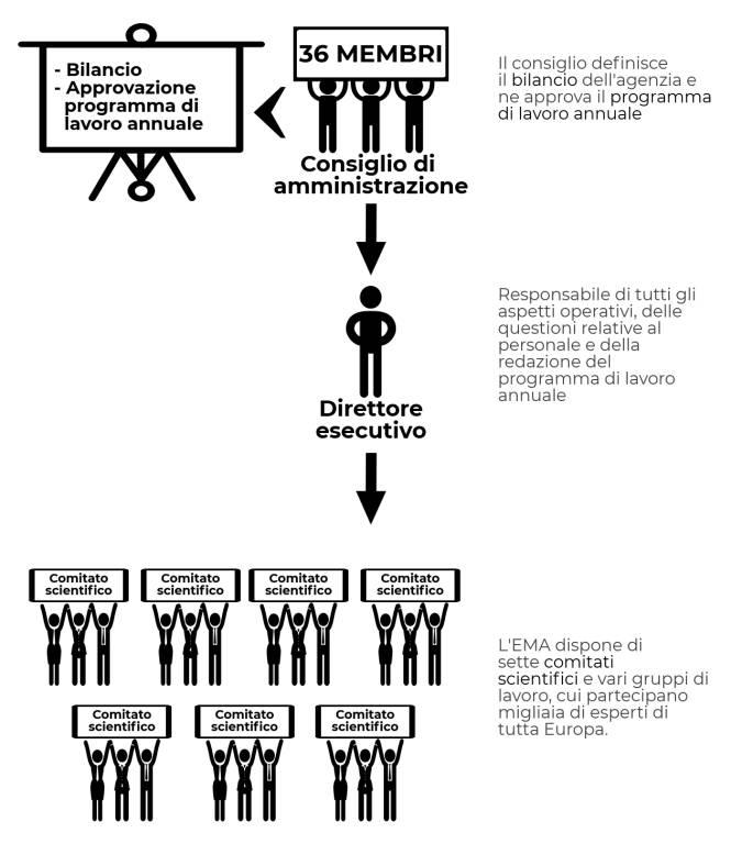EMA struttura