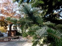 giardini estensi: piante e monumenti con Teresio Colombo