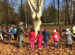 Giornata dell'albero 2017 a Varese