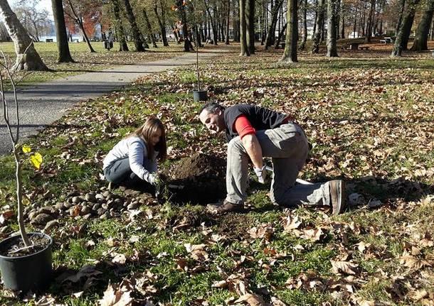 Il Movimento 5 Stelle pianta alberi alla Schiranna