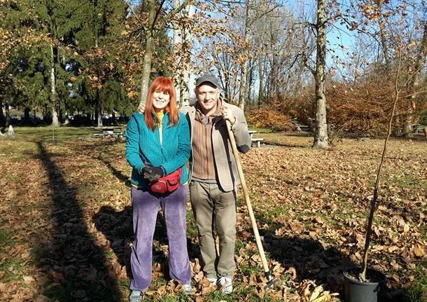 Nuovi alberi alla Schiranna: giardinieri i militanti del Movimento 5 Stelle