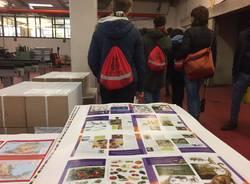 PMIDay: gli studenti dell'Anna Frank in visita alla Tipografica Varese