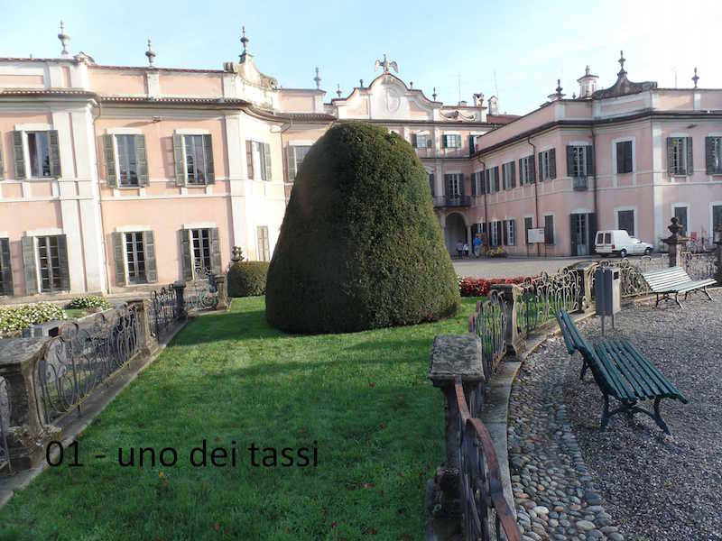 Teresio Colombo palazzo Estense