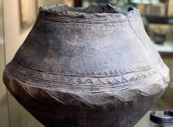 vaso archeologia preistoria cultura golasecca