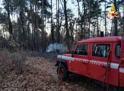 incendio bosco vergiate