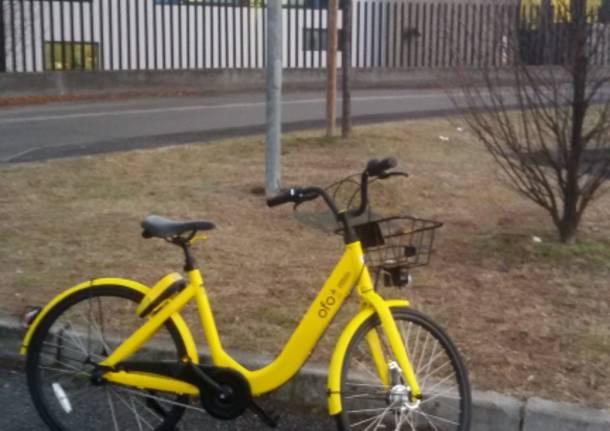 Bici OFO abbandonata ad Azzate