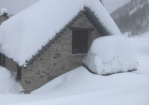 Che nevicata all'Alpe Devero!