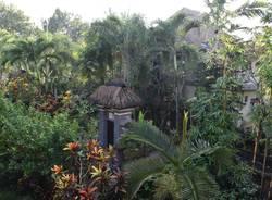 In viaggio col mercante - Indonesia e Bali