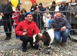S.Antonio 2018: la benedizione degli animali e del pane