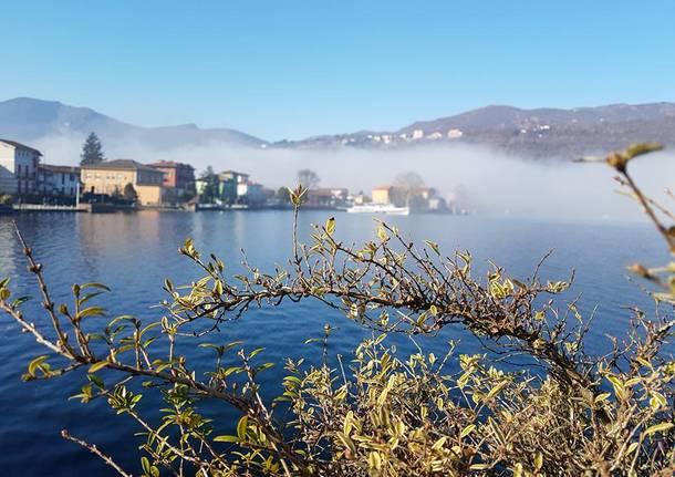 Porto Ceresio - foto di Dina Rebeschi