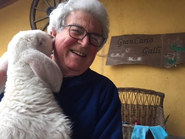 Agnellini scampati alla morte al Rifugio animali felici