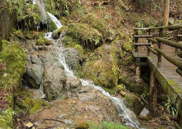 Induno Olona, grotte di Valganna - foto di Maria Desogos