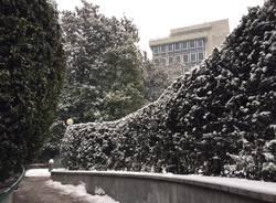 nevicata 1 marzo 2018 liuc biblioteca legnano castellanza