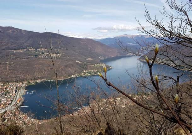 Besano, panorama dal monte Grumello - Foto di Dina Rebeschi