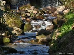 Brusimpiano, il torrente Trallo - foto di Gianpietro Toniolo