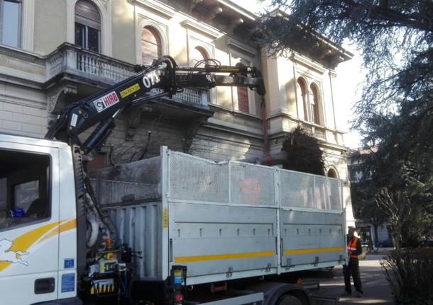 Trasloco del faggio: da via Primo Maggio a Villa Gianetti