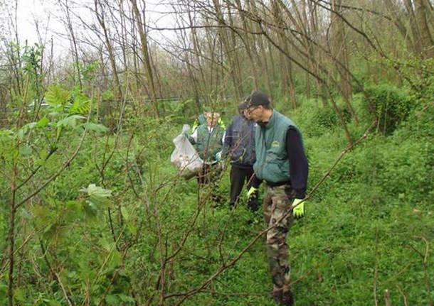 giornata ecologica gemonio pulizia dei boschi
